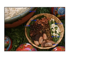 The raw materials for making tejate possess great nutritional potential. Clockwise, from right: (a) fresh (i) and dried (ii) rosita de cacao flowers, (b) pixtle, (c) cacao rojo, (d) cacao blanco, (e) maize (shown in the processed, masa form). Image adapted from Flickr: http://www.flickr.com/photos/tledavid/2546925034/.