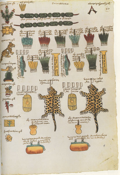 Aztec example of what one could buy with cacao beans in their civilization. Jaguar pelt anyone?