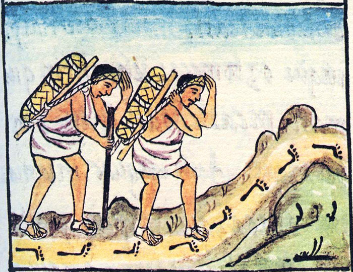 The Role Of Pochteca Merchants In Aztec Cacao Consumption