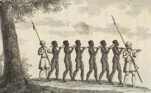 Coffle of Slaves