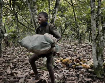 ivory-coast-cocoa-child
