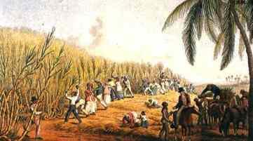 sugar-plantation-1823