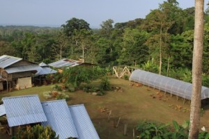 Daniel South's cacao farm in Costa Rica. He worked under Dan and Jael Rattigan, learning from them and now supplying some of their beans. [http://frenchbroadchocolates.com/cacao-farm/daniel-souths-fermentary/]