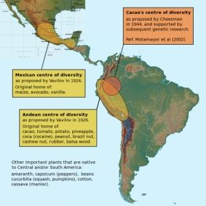 cacaohistorymap