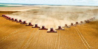Choc class field crop