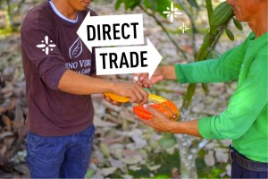 In this picture on the Meridian Cacao Company site, one can see that the makers of this chocolate are really trying to emphasize the close relationships that they have with cacao farmers. This could help increase consumer confidence that work conditions on these farms are being carefully monitored.