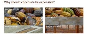This image (taken from the website of The Chocolate Tree Company) attempts to draw a comparison between the processing practices of craft chocolate makers and those of other companies in order to justify the high cost of their chocolate.