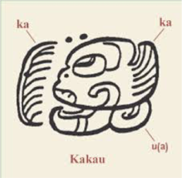 Kakaw