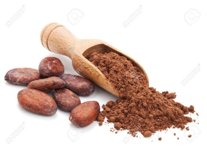 15033312-cacao-beans-and-cacao-powder-isolated-on-white-background-stock-photo