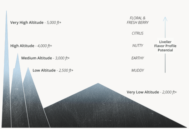 Altitude-Map