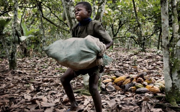 boy carrying cacao bag