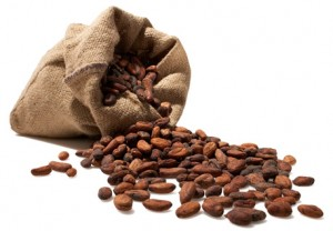 raw-cacao-beans-300x208