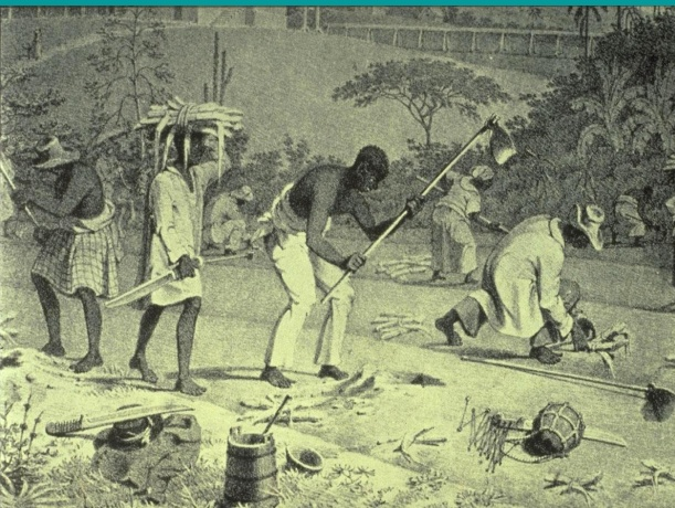 Slaves-in-Haiti