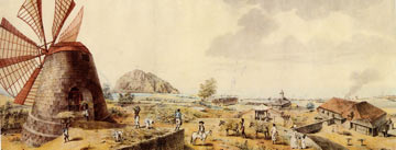 university-virginia-plantation