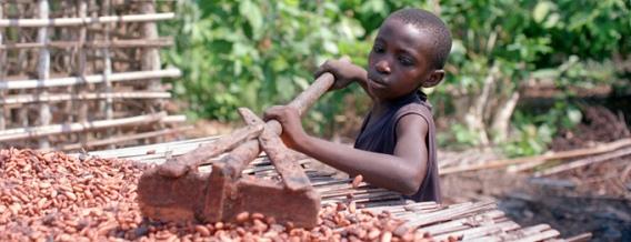 chocolate_slavery_main