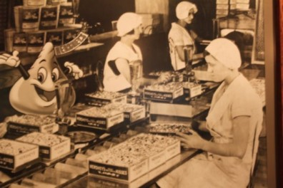 assembly-line-chocolate.jpg