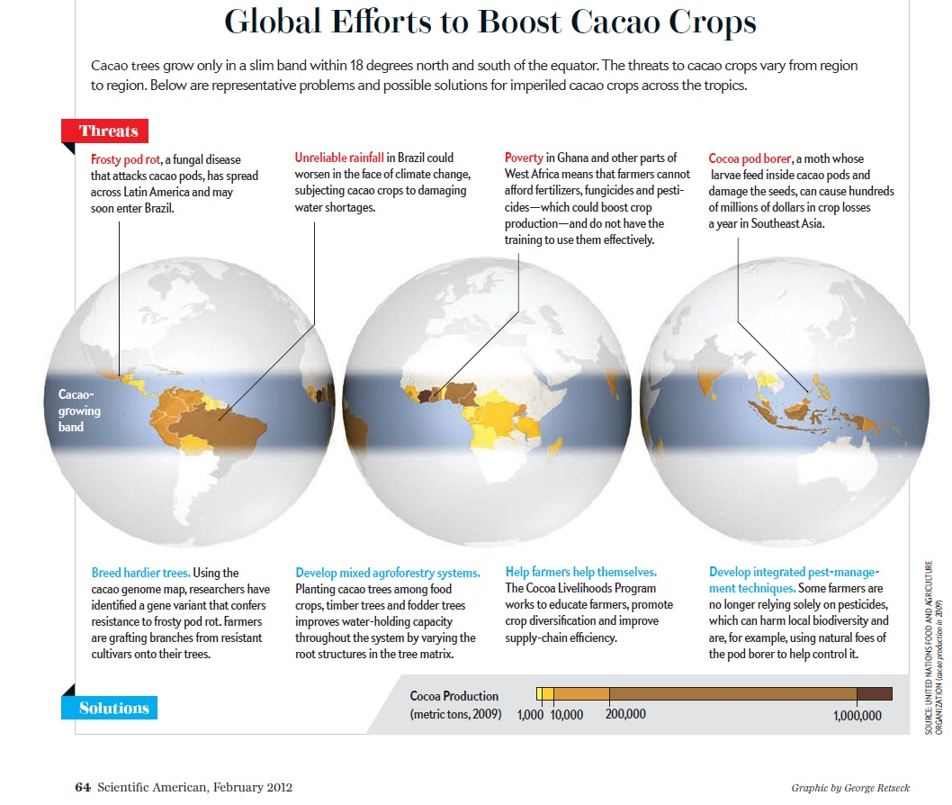 Global Efforts to boost cacao crops_scientific american