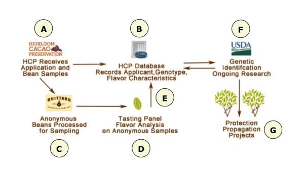 hcp-process-detail