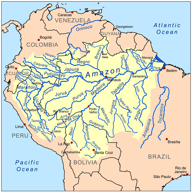 Amazon Basin