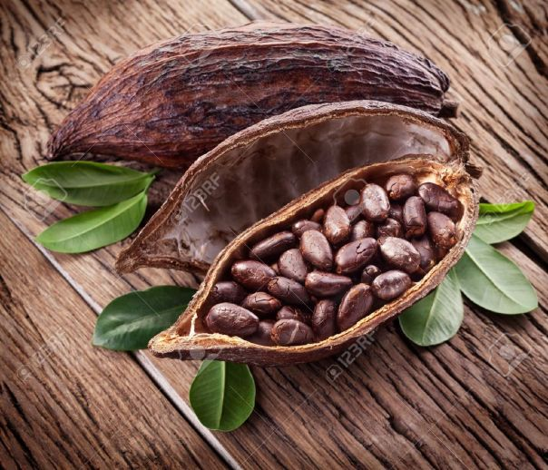 Cocoa-pod-on-a-dark-wooden-table-Stock-Photo-cocoa-cacao-bean
