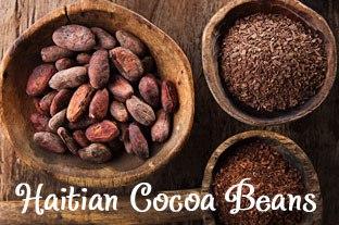 haitian-cocoa-beans.jpg