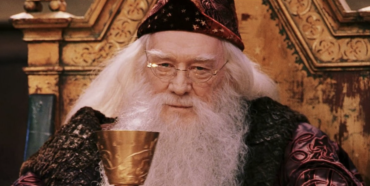 Dumbledore Loves Chocolate