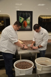 "Silverman and Piekarski sorting cacao beans (""Sorting Beans"")."
